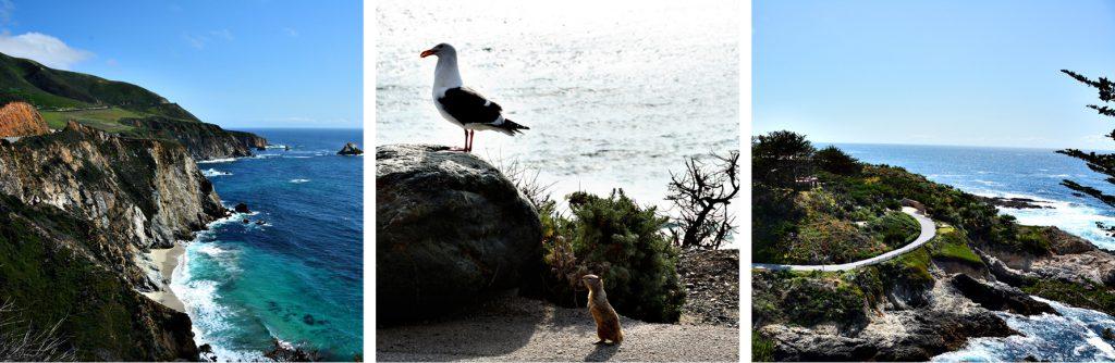 Die Must-See Route 1 in Kalifornien, San Francisco-San Diego, www.diefernwehfamilie.de