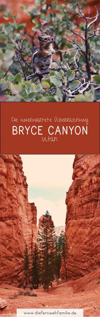Die unerwartete Überraschung | Bryce Canyon | DieFernwehFamilie.de