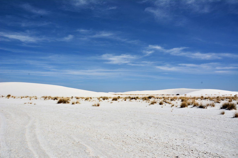 Du planst eine Rundreise durch die USA, dann darfst du White Sands in New Mexico nicht verpassen_DieFernwehFamilie Titelbild